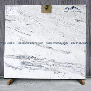 Sapa White Marble _CBQT-51-01